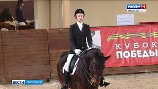 В Смоленске проходит этап конно-спортивного кубка