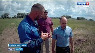 Через два года в Рубцовском районе заработает современная оросительная система