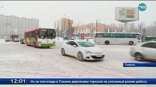 8,3 миллиметра осадков выпало в Тюмени за ночь
