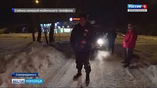В Привокзальном районе Северодвинска охотовед застрелил заблудшую рысь