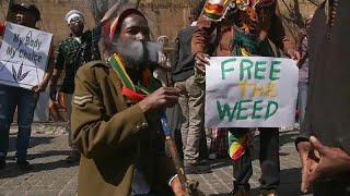 В ЮАР легализовали марихуану для частно потребления