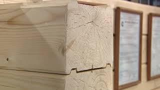 В рамках выставки «Загородный дом» состоялся мастер-класс по традиционному строительству