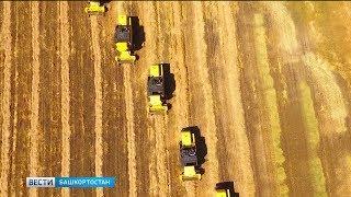 На поддержку сельского хозяйства из бюджета Башкортостана дополнительно выделят 1 млрд рублей