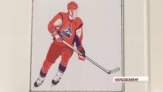Звезды отечественного хоккея выйдут на лед новенького спорткомплекса в Некрасовском
