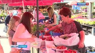 В Брянске проверяют ягоды и фрукты