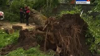 В Костроме и области устраняют последствия сегодняшней непогоды
