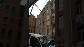Спасение куницы с пятого этажа в Воронеже