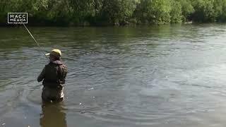 Тело жителя села Ковран, который утонул в реке, спасаясь от медведя, нашли вчера утром