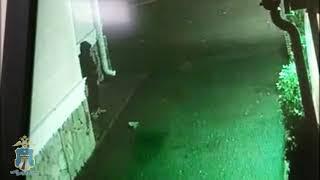 В Ессентуках украли 4 шубы из магазина