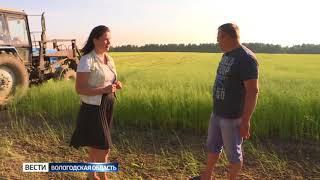 В Вологодской области началась уборка урожая