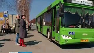 В департаменте транспорта рассказали, как будут ходить транспорт в Родительский день