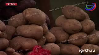В Россию запрещено ввозить картофель из Египта