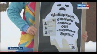 В Йошкар-Оле прошёл пикет наблюдателей «Национального общественного мониторинга» - Вести Марий Эл