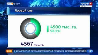 В Алтайском крае засеяно 98,5% посевного клина