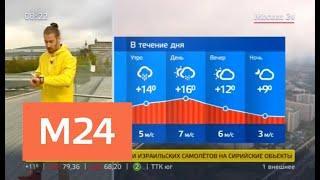 """""""Утро"""": пасмурная погода ожидается в столичном регионе 18 сентября - Москва 24"""