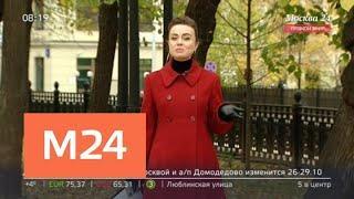 """""""Утро"""": дождливая погода ожидается в столичном регионе 23 октября - Москва 24"""