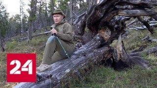Путин провел выходные на берегах Енисея - Россия 24