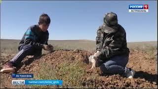 """Астраханский сводный отряд """"Лотос"""" ведет работу по поиску останков"""