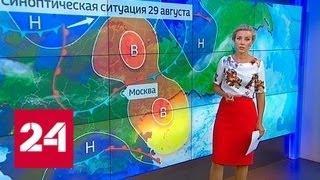 """""""Погода 24"""": в Москве может быть установлен очередной рекорд жары - Россия 24"""