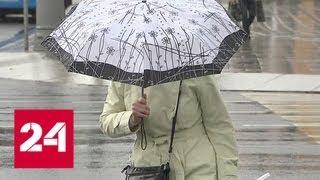 Порывистый ветер и дожди: в столице желтый уровень погодной опасности - Россия 24