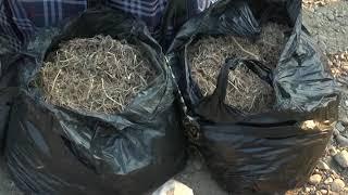 Наркокурьера с крупной партией марихуаны задержали в Биробиджане(РИА Биробиджан)