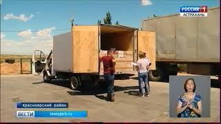 Тонну аргентинского мяса и более 2 тонн сметаны незаконно пытались вывезти из России в Казахстан