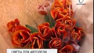 Белгородские госавтоинспекторы поздравили автоледи