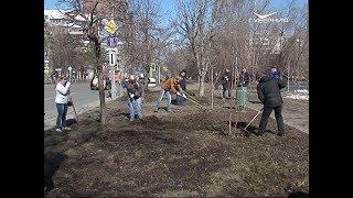 Во время Гагаринского субботника с улиц Самары вывезли 5 тысяч кубометров мусора
