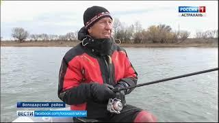 """""""Вести с рыбалки"""". Какая хищная рыба ловится в Астраханской области?"""