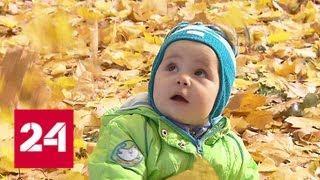 Наслаждаться золотой осенью в Москве можно будет еще неделю - Россия 24