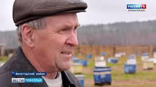 Фермеры Вилегодского района получили грант на развитие пчеловодческого хозяйства