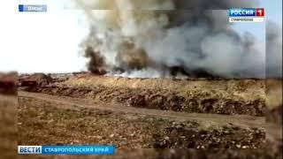 Свалка в хуторе Нижнерусский: самовозгорание или поджог?
