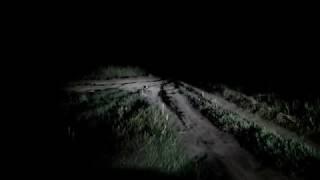 Ночной поиск Маши (2)