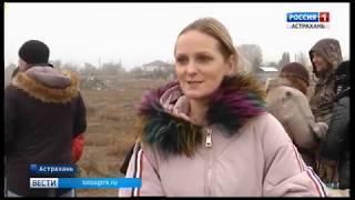 В Астрахани до конца этого года планируют предоставить многодетным семьям 176 земельных участков