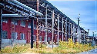 Стало известно, когда запустят новое производство на базе завода МДФ в Мортке