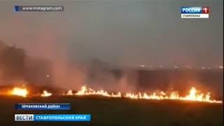 В пригороде Михайловска полыхал огонь