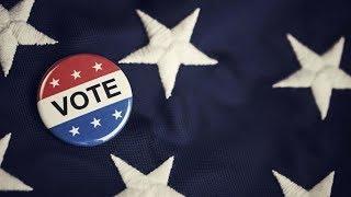 «Демократы делают все, чтобы проиграть». Как США готовятся к промежуточным выборам?