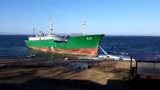 Сильный ветер вынес судно из КНДР на мель в Приморье. 1