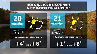 Прогноз погоды. Зима откладывается на неопределённое время