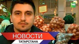 Новости Татарстана 31/10/18 ТНВ