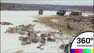 За 5 лет на территории Подмосковья было закрыто 24 полигона ТБО
