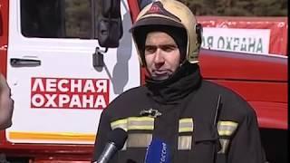 В регионе прошли учения по тушению лесных пожаров
