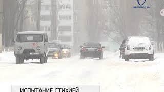 Дворы и улицы Белгорода от снега очищают 146 единиц техники