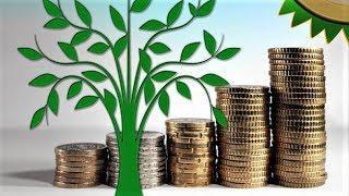 Наталья Комарова сравнила положительный опыт юных экологов с кредитной историей в банке