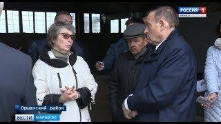 «Поле непаханое» - Александр Евстифеев посетил Оршанский район по вопросу использования  земель