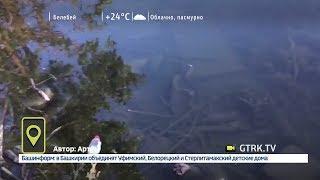 На берегу озера Теплое в Уфе скопились тонны мусора