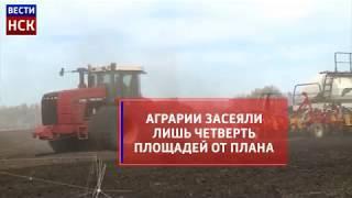 Посевная кампания в Новосибирской области