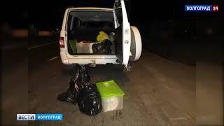 Двум волгоградцам грозит до 5 лет тюрьмы за убитую косулю