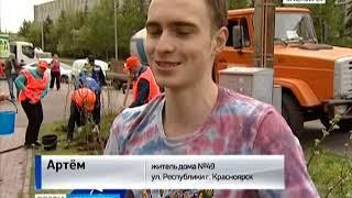 Более 200 кустов сирени и молодые березы высадили в одном из скверов Красноярска
