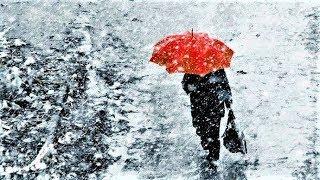Метеорологи: Этот май самый холодный за прошедшее десятилетие! Когда, наконец, придёт лето?